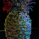 Neon fruit- pineapple