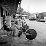 Nap between races at the Fair: Horse Barn