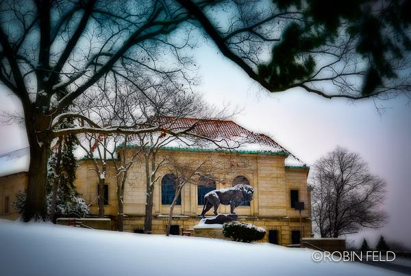 Dayton Art Institute: winter in Dayton Ohio