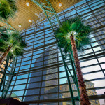 View in Schuster Center Winter Garden of palm trees and Dayton