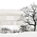Winter snow scene black and white barn & tree
