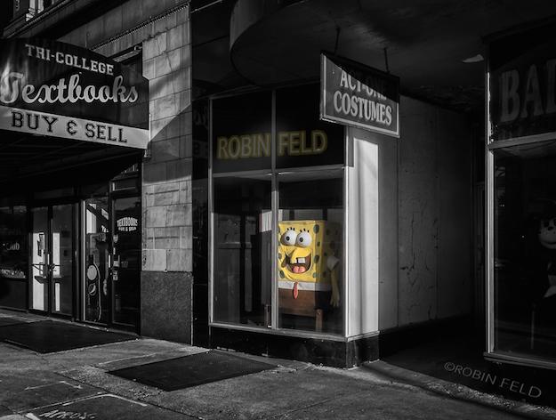 Celebrity spotting of Sponge Bot