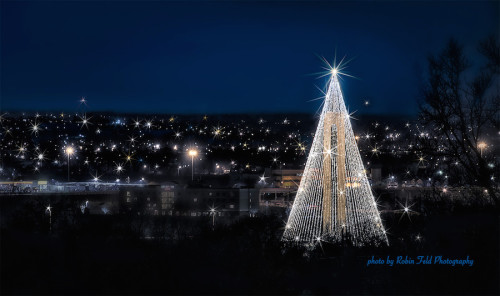 Carillon Tree of Lights, Dayton