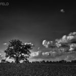 Black and white country scenic