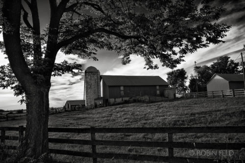Country farm scene in black and white